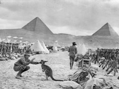The Landing of the Australian Troops in Egypt