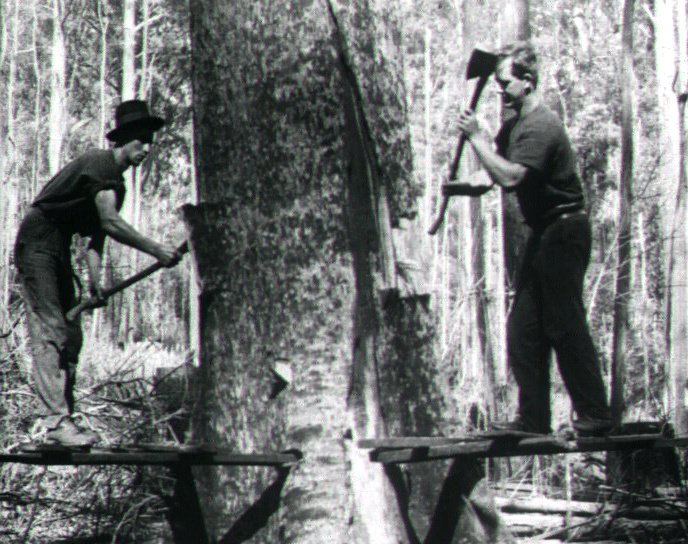 fe4c3a9c5be0 From the Bush to the Bungalow (1920) clip 1 on ASO - Australia s audio and  visual heritage online